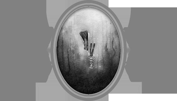 Le gondolier des ténèbres - aperçu